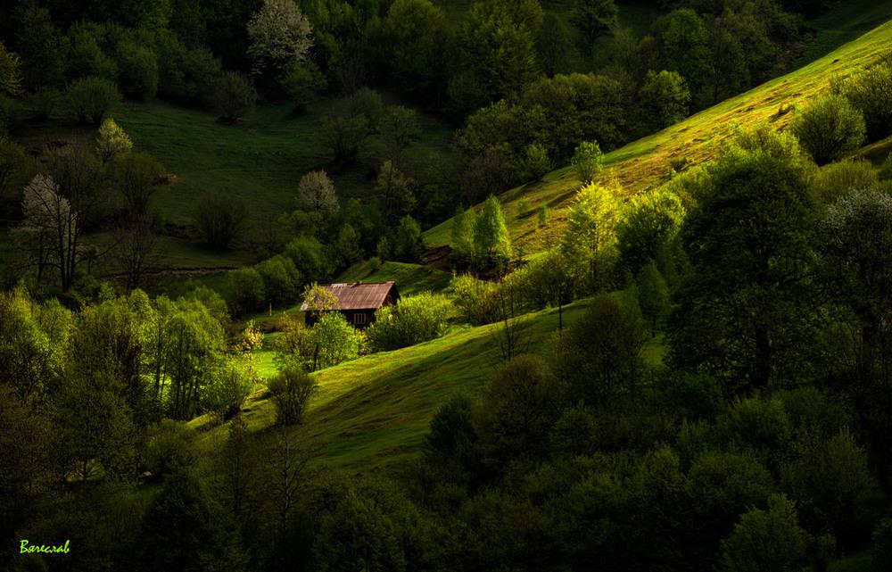 Травневі Карпати Автор: В'ячеслав
