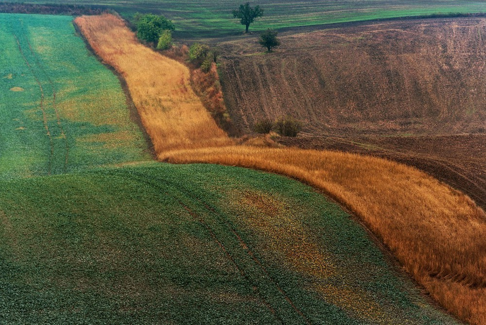 Golden River Автор: ZIAD