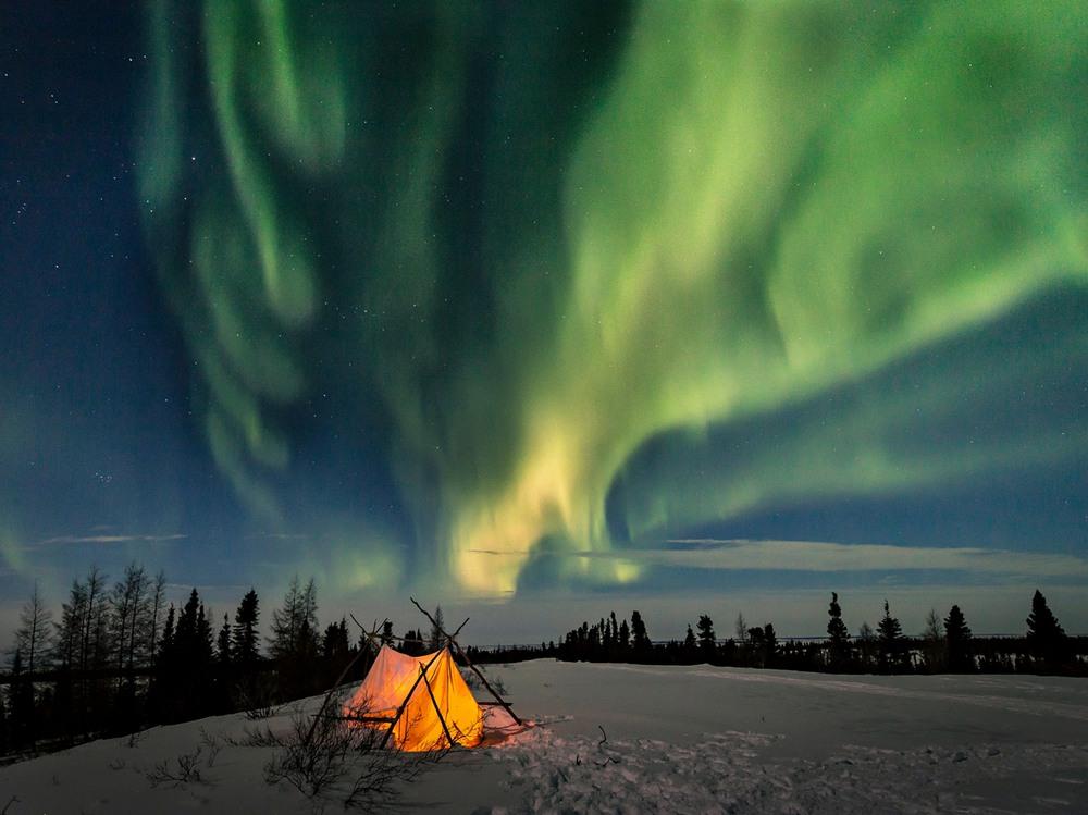 5 Арктические ночи. Автор - Judith Conning