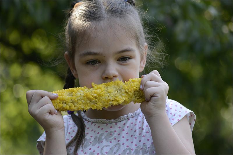 Фазы поедания кукурузы