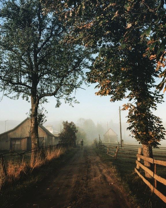 Неймовірний ранок у Ворохті Автор: Роман & Галя (*_*)