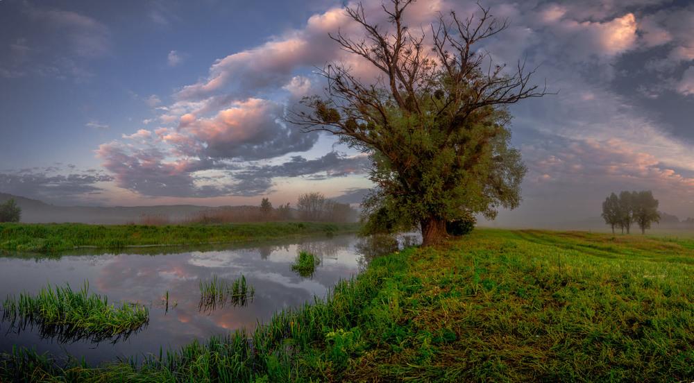..Світає,  край неба палає,  соловейко в темнім гаї  сонце зустрічає.... Автор: Ігор Солодовніков