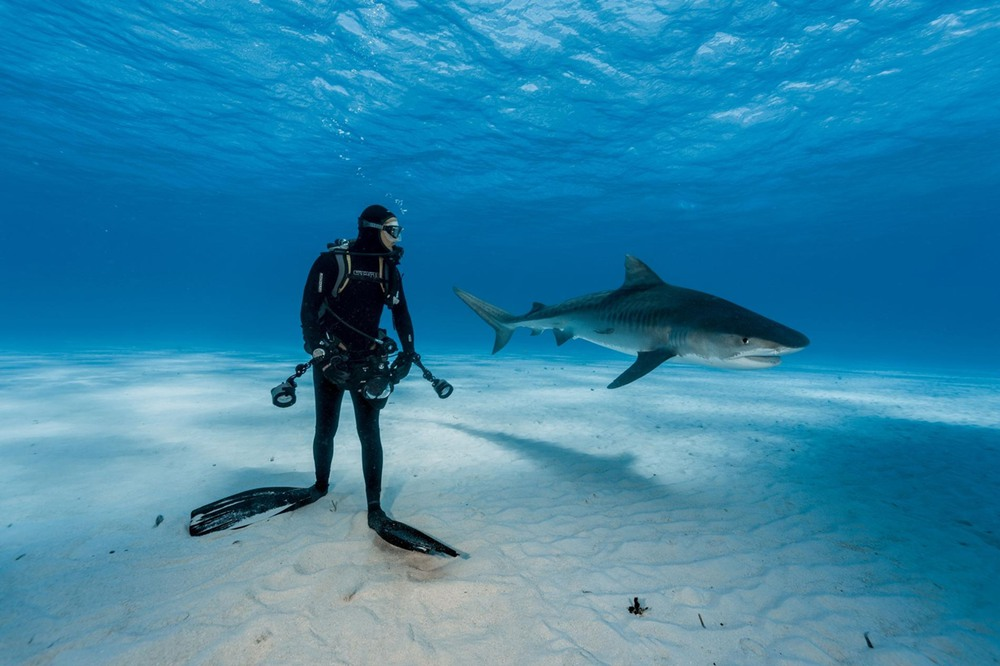 2 BRIAN SKERRY