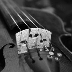 Скрипка и ее душа