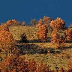 Родопська осінь