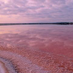 Озеро Салінас. Торрев'єха 3
