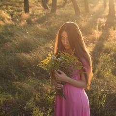 квіти польові