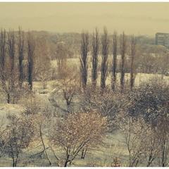 Взимку
