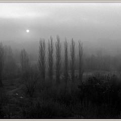 Про туман