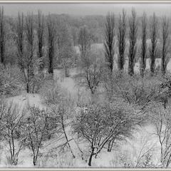 Сніжно стало вже...