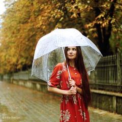 дождливый денек...