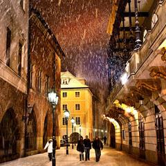 Snowаfall