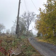 туманний ранок на селі