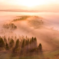Туманное утро в Карпатах 2
