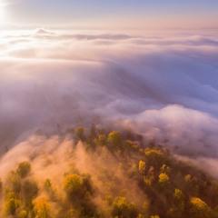 Туманное утро в Карпатах