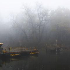Соединяет берега в туман паромщик