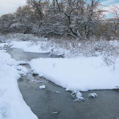 Поет зима - аукает, мохнатый лес баюкает