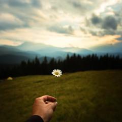 краса природи в самій природі