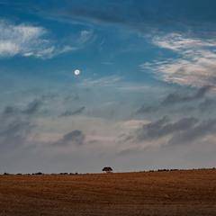 Печально глядела в окошко луна...