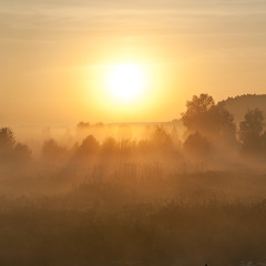 С добрым утром, страна!