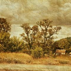На краю деревни.