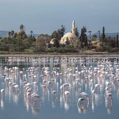 Кипр, Ларнака