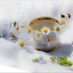 Згадка про квітень