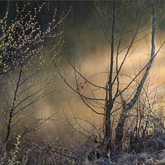 Квітневий туман стелиться по річечці...