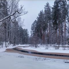 Тече річка невеличка через Рівненське Полісся 2...