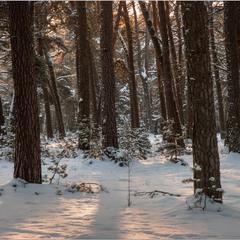 А зима не за горами...