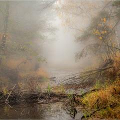 Ранок починається з туману...