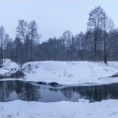 Тече річка невеличка через Рівненське Полісся...