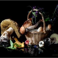 Поліські грибочки