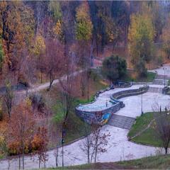 Київська осінь. Солом'янський лісопарк.