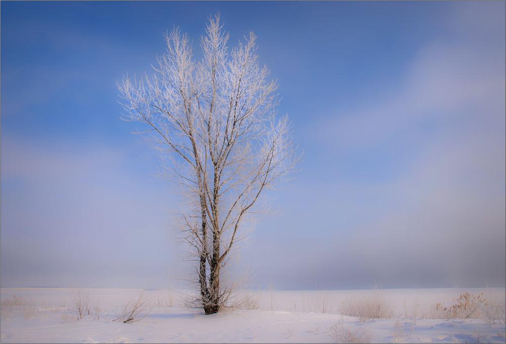 картинки ветреной погоды зимой отдельных