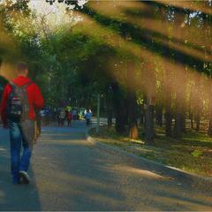 Прогулка с тенью