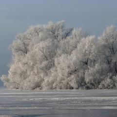 Зимові наряди