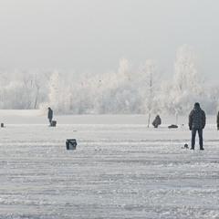 В Зимових мереживах