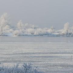 Зимові мережива