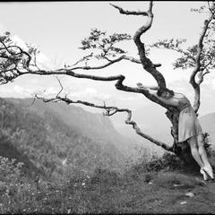 """Les Ailes du Desir"", en hommage a Wim Wenders"