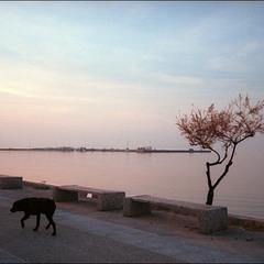 грудень в Салоніках