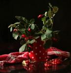 С красными ягодками