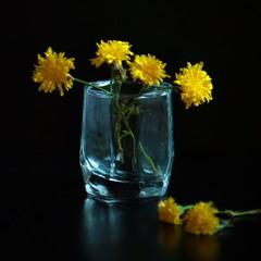 Про скромненькие жёлтенькие цветочки