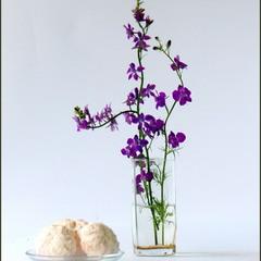 С цветами и зефирками