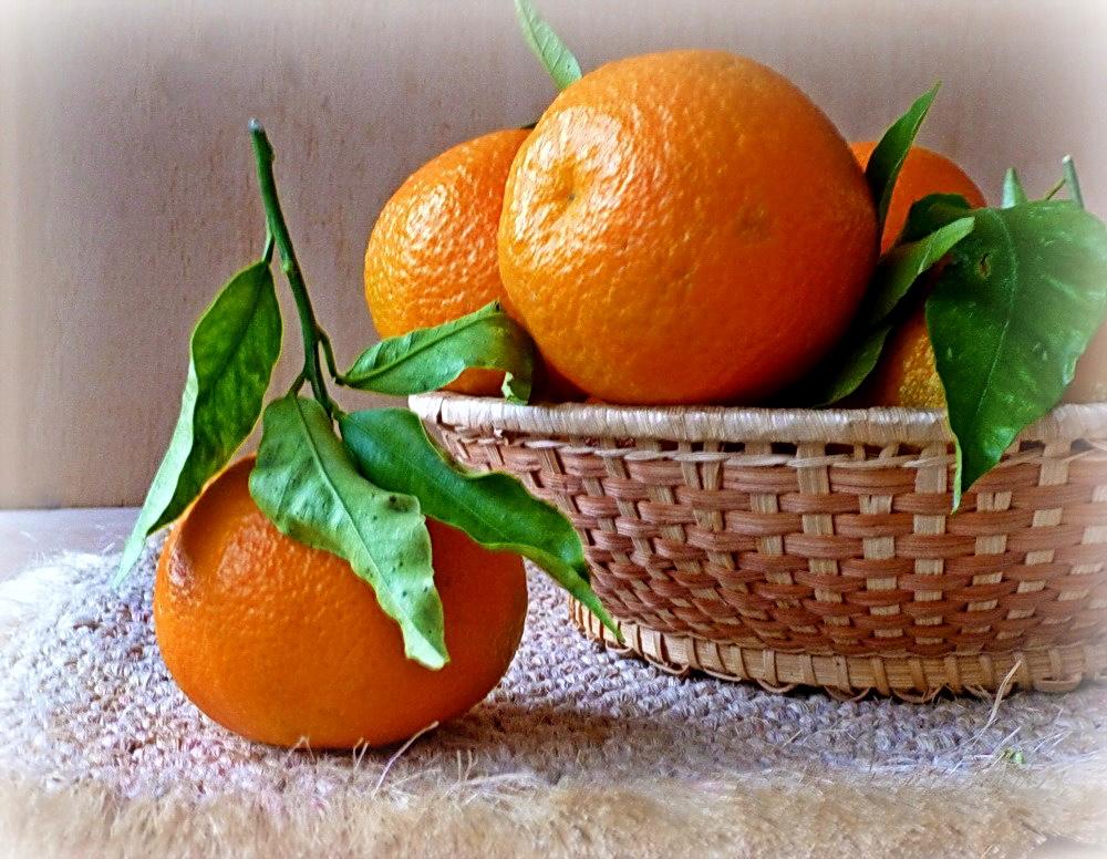 красивые фото натюрмортов из апельсин одно