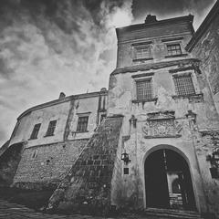 Olesko. Castle.
