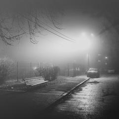 Туманные объятия декабря...