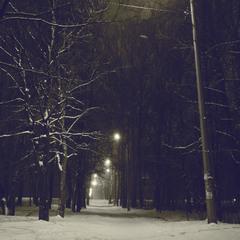 В летнем парке зима