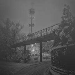 в обіймах снігового туману