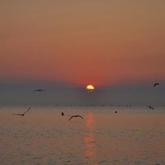 раннее солнце